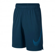 Nike JR Dry Training Fly GFX šortai