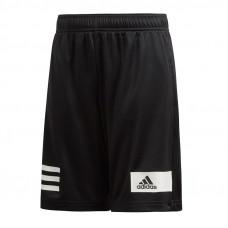 Adidas JR Climacool TR šortai